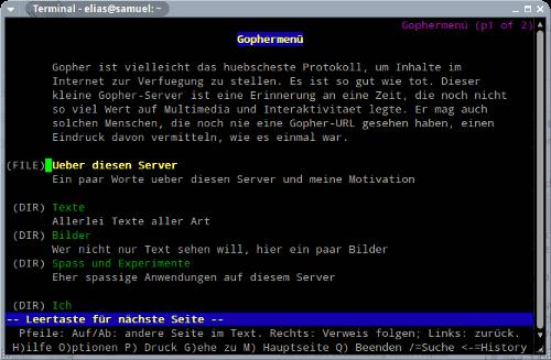 Screenshot eines Browsers im Textmodus